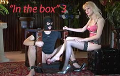 sex bdsm box locked slave used by woman